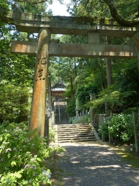 惣河内神社 紫陽花の咲く風景 1