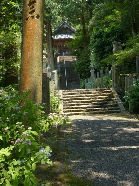 惣河内神社 紫陽花の咲く風景 5