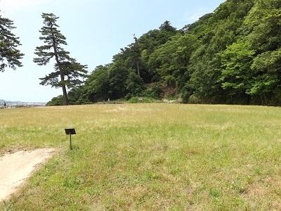 鳥取城見学 (13)