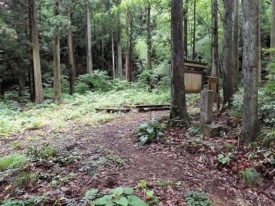 福井市安居城跡の踏査2017年7月5日 (1)