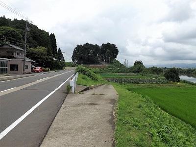 福井市安居城跡の踏査2017年7月5日 (2)