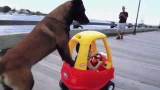 dog_kid.jpg