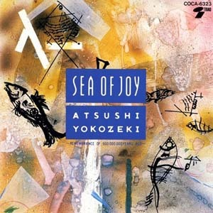 atsusi_yokozeki-sea_of_joy2.jpg