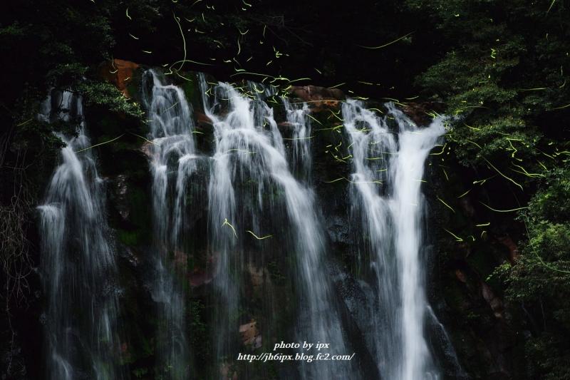 滝とホタル(blog)