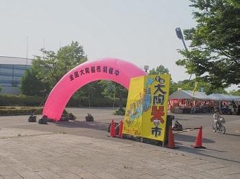 いつもの公園さんぽ20170520-10