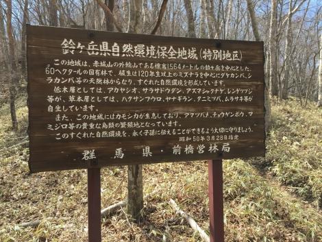 赤城鈴ヶ岳 (5)