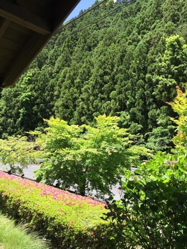 梅田そば (8)