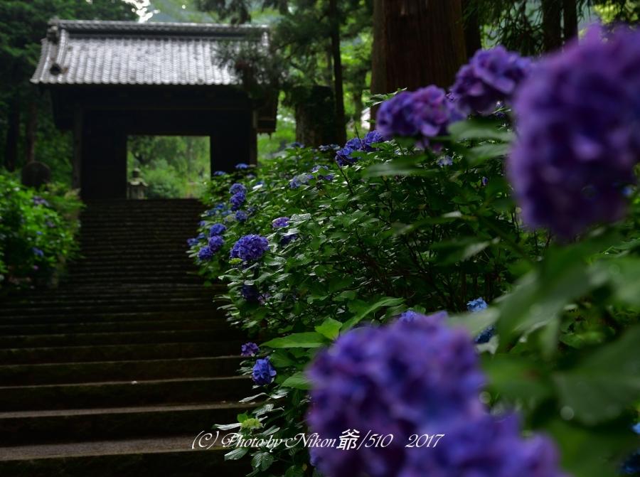 大中寺2SN