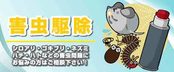 【至急大募集】日当3万円可能!害虫駆除!10名募集!