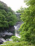 高津戸峡遊歩道から見たはねたき橋