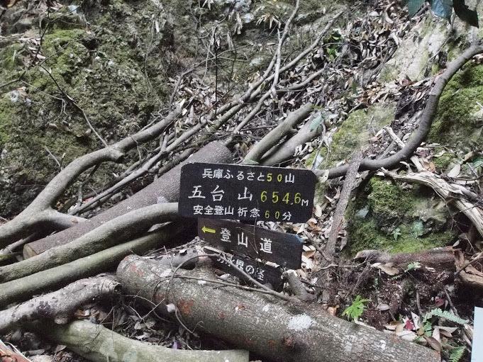 20170430五台山/左手