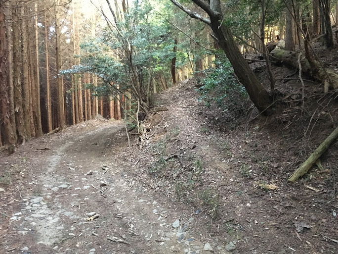 2017滝王山/取りつき