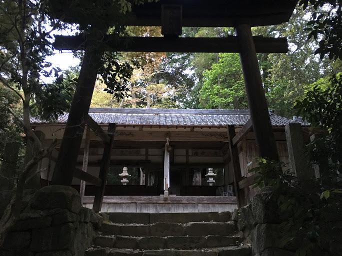 2017点539/八坂神社