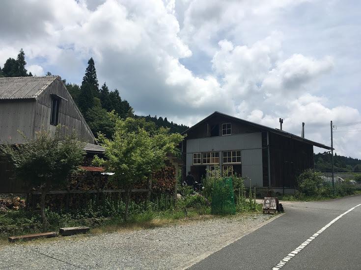 2017三国ヶ岳/のら