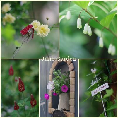 庭と雑貨170503