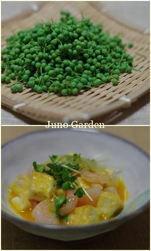 豆腐170610