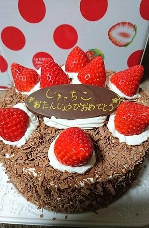 ワンコさんからのケーキ