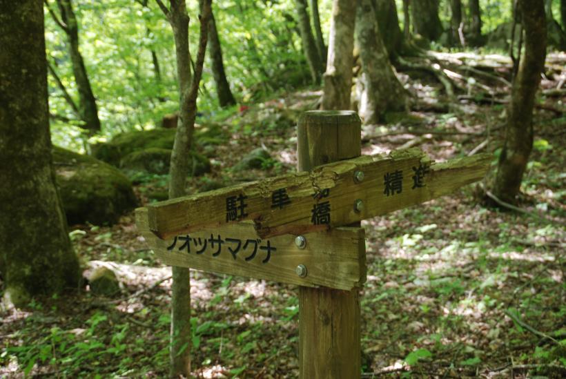 北精進ヶ滝61