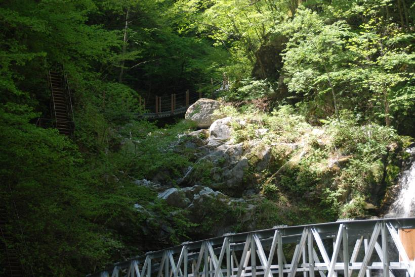 北精進ヶ滝83