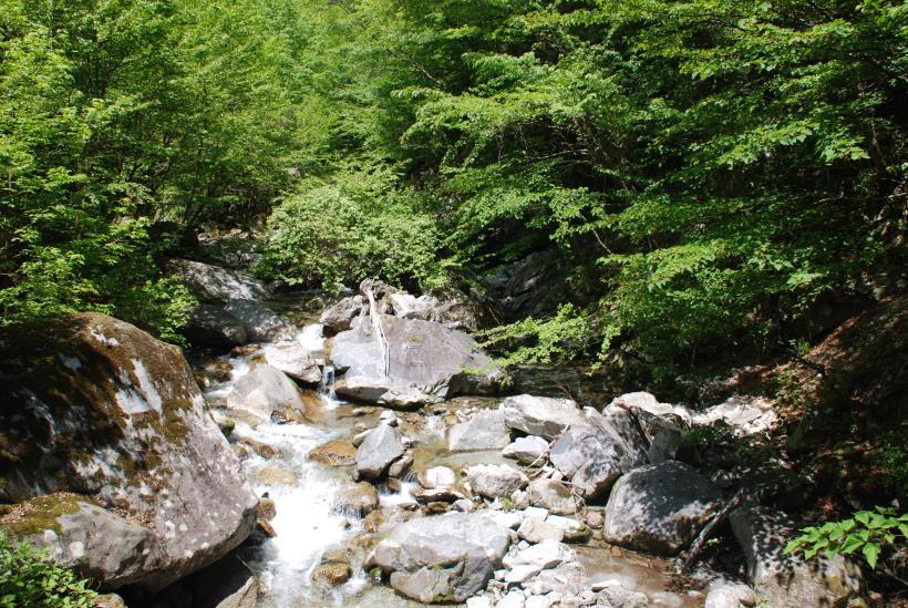 北精進ヶ滝116