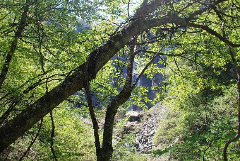 北精進ヶ滝184