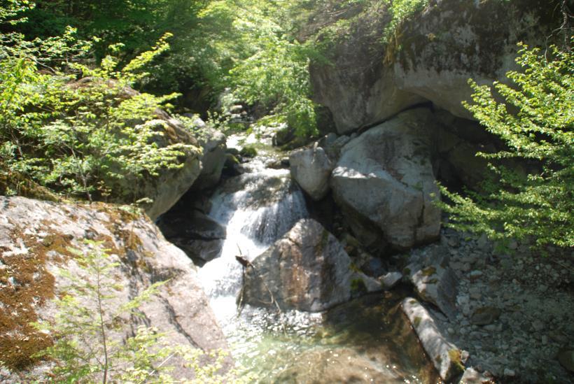 北精進ヶ滝246