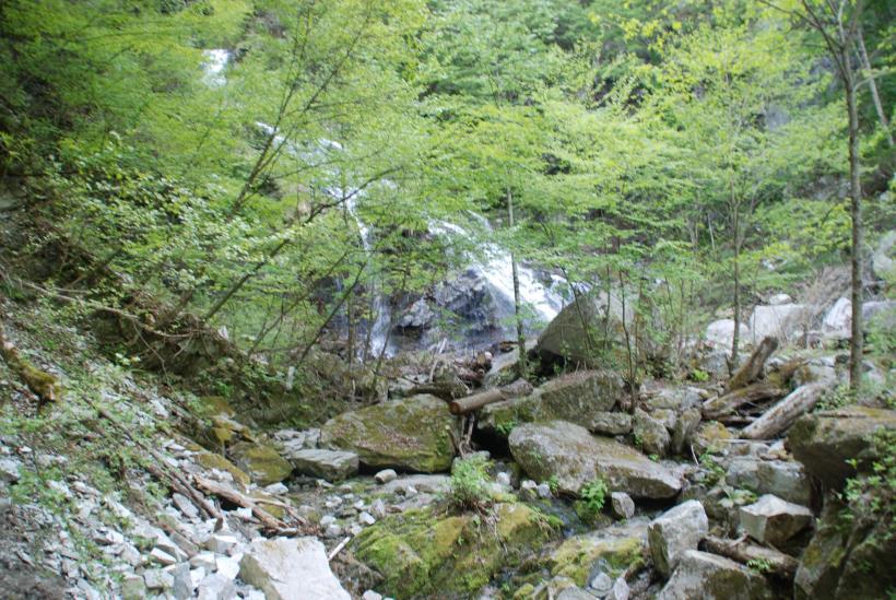 北精進ヶ滝268