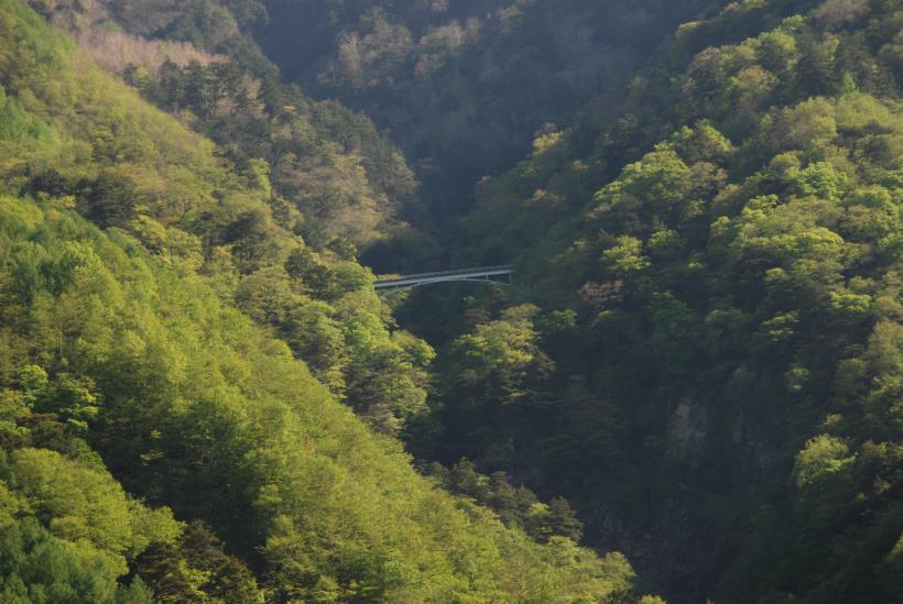 北精進ヶ滝297
