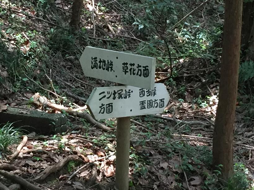 菅生北尾根50B