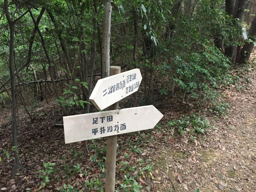 菅生北尾根68