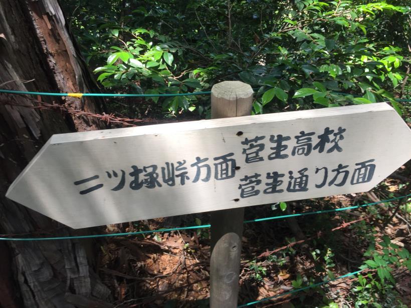 菅生北尾根91