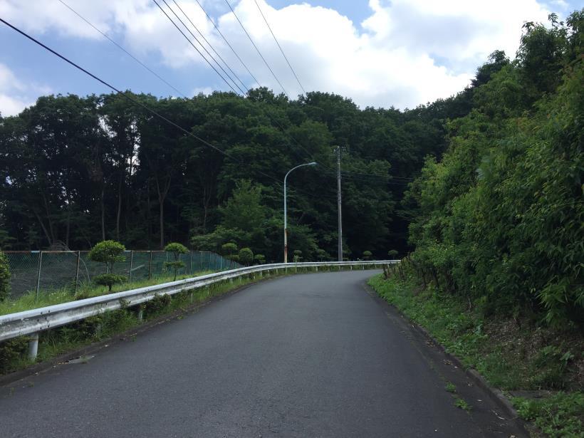 菅生北尾根139