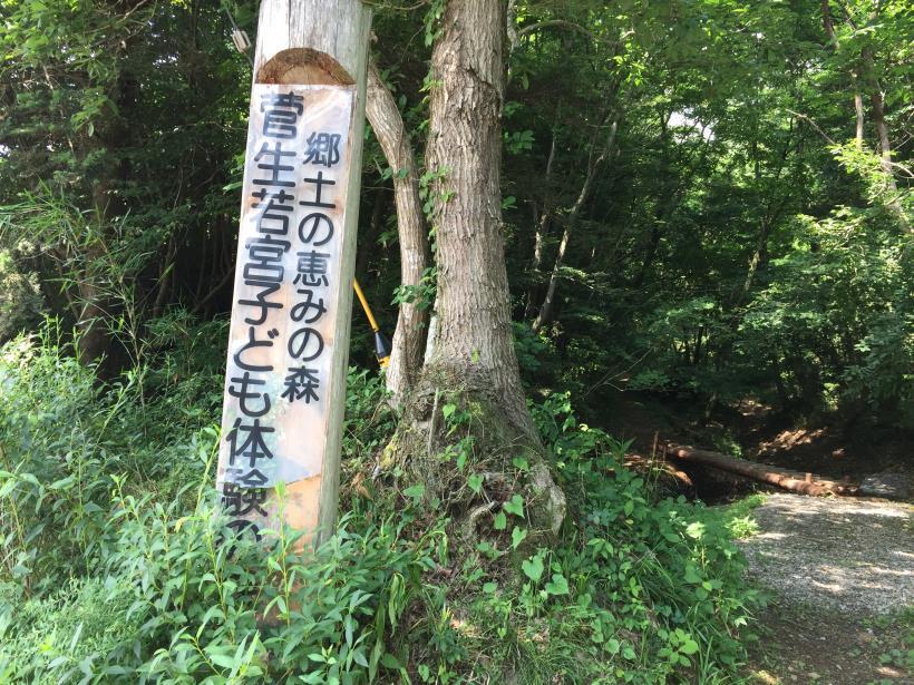 菅生北尾根161