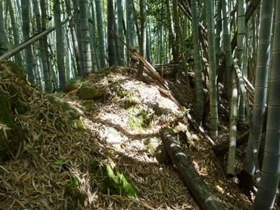 朝倉城_詰ノ段土塁2