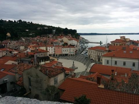 スロヴェニア旅行3日目-ピラン26