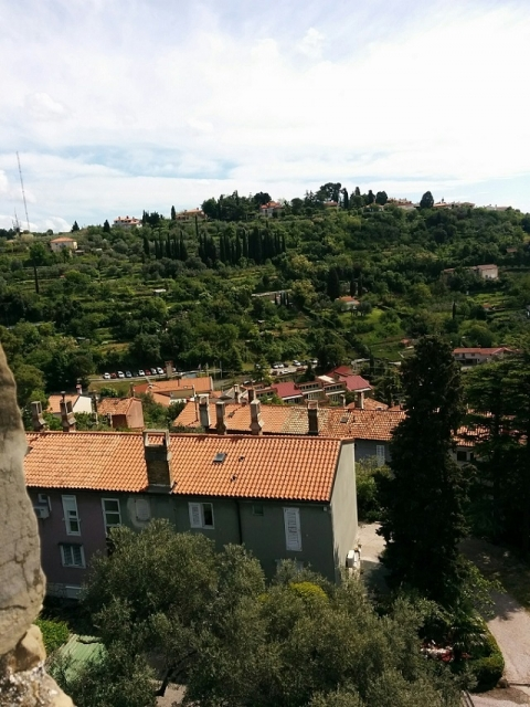 スロヴェニア旅行3日目-ピラン49