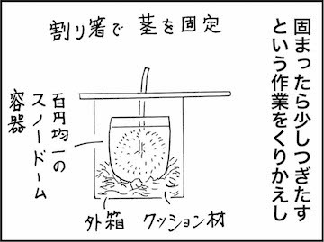 kfc00875-4