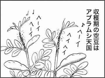 kfc00876-5