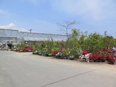 浜北緑花木センター