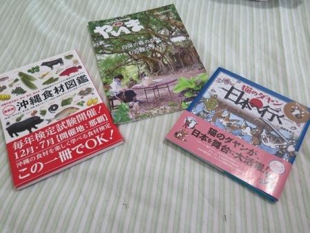石垣島でお買い物