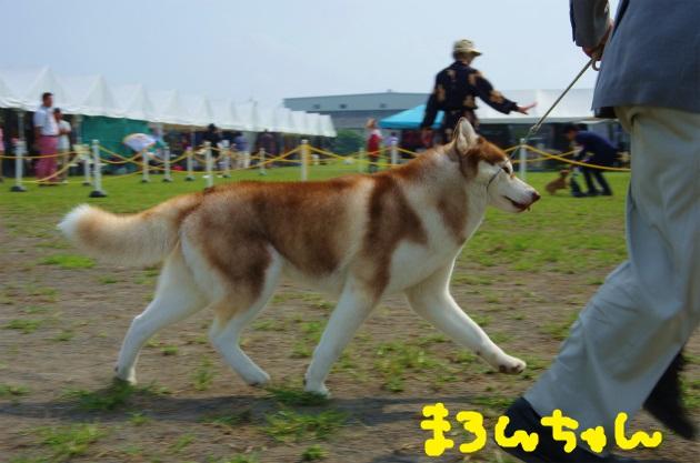 BAAA3558.jpg