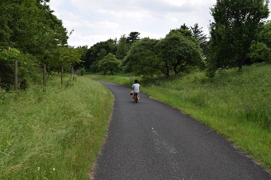 サイクリング③