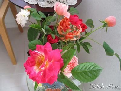 s-IMG_4090k30.jpg