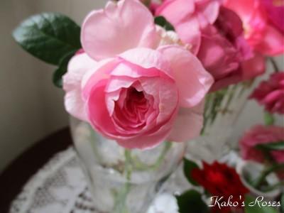s-IMG_5410k30.jpg