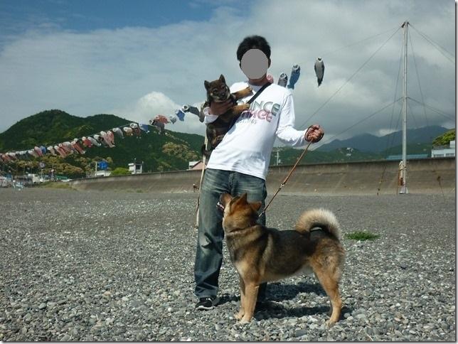 20170505カムイ桃太端午の節句01-07