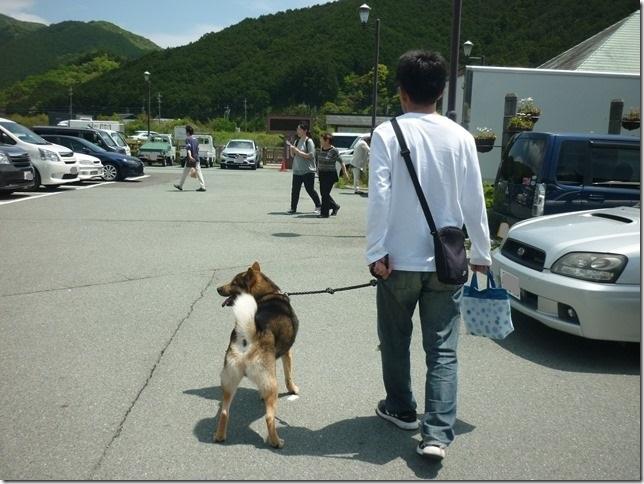 20170505カムイ桃太端午の節句03-02
