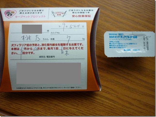 201705桃太ワクチン1回目-07