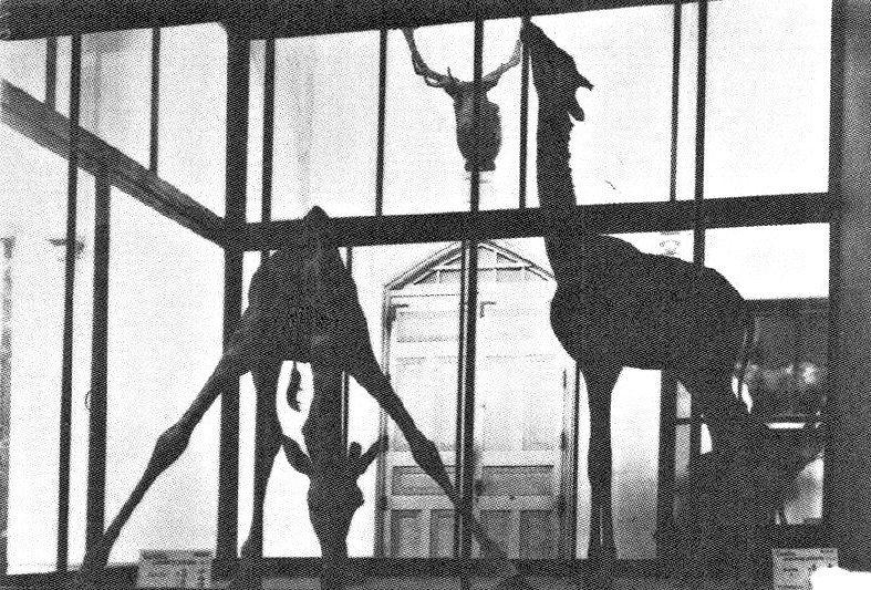 開館当時の博物館~1階天産部陳列室(キリンの剥製が展示されている)