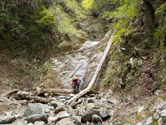 022 2条8mの滝 倒木わきにフィックスロープあり