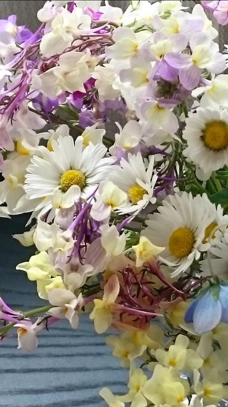 Screenshot_2017-04-15-16-38-14 (1)